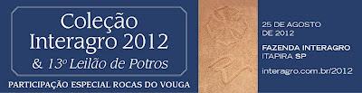 Leilão Coleção Interagro 2012