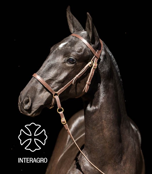 MADAME INTERAGRO 9O2A1480