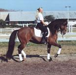 rider2sm