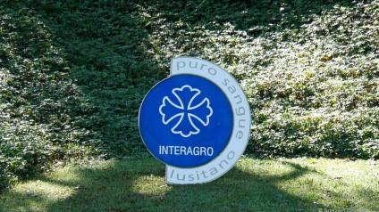 2a etapa Ranking Interno de Adestramento/Interagro Lusitanos