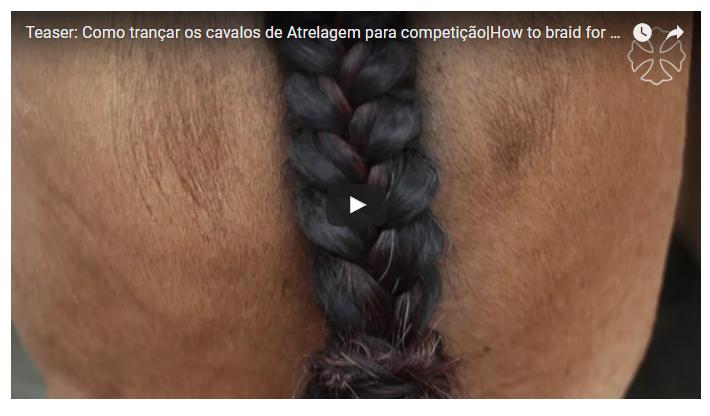 Antônio Mariano de Souza, condutor chefe da Interagro mostra como trançar as crinas e rabos dos cavalos de atrelagem para competição.