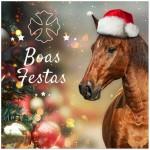Quebracho Interagro/Boas Festas